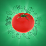Tomato on green background with vegetable sketches Stock Images