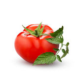 Tomato with green leaf isolated on white Stock Image