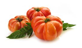 Tomato with green leaves Stock Images