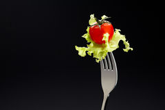 Tomato and Green Oak on a fork. Royalty Free Stock Images