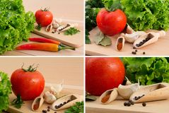 Tomato, green salad, garlic, paprika & chilli Royalty Free Stock Images