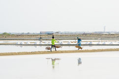 Salt farm Stock Photography