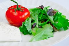 Tomato and greens. Tomato and fresh mixed green leaves on the white plate Stock Photos