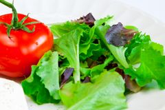 Tomato and greens. Tomato and fresh mixed green leaves on the white plate Royalty Free Stock Photos