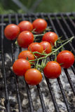 Tomato grill. Beautifull cherry tomatoes with drops of water, grilling Stock Image