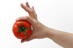 Tomato and hand Royalty Free Stock Photos