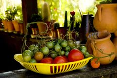 Tomato harvest. Red and green tomatoes in a yellow basket on the veranda of a summer house royalty free stock image