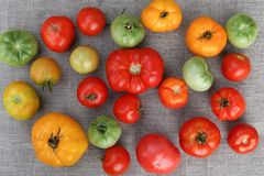 Tomato harvest. A tightly woven linen as a background Stock Images