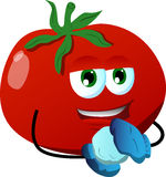 Tomato having winter fun Royalty Free Stock Images