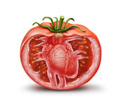 Tomato Heart Health Icon Royalty Free Stock Photo