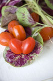 Tomato heart shape Royalty Free Stock Photos