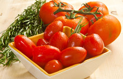 Tomato and herbs Royalty Free Stock Photo