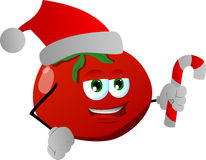 Tomato holding a candy cane and wearing Santa's hat Stock Images