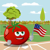 Tomato holding the flag of the USA on a baseball field Royalty Free Stock Photos