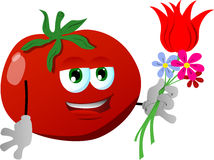 Tomato holding tulip and other flowers Royalty Free Stock Photography