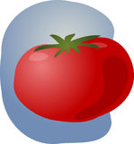 Tomato illustration Stock Photos