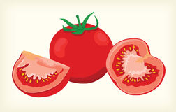Tomato  and cliparts Royalty Free Stock Images