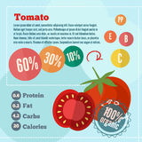 Tomato infographics and vitamins in a flat style. Vector illustration. EPS 10 Stock Images