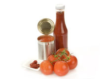 Tomato ingredients Royalty Free Stock Photo