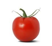 Tomato isolated Royalty Free Stock Image