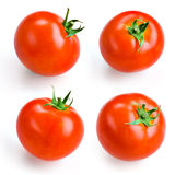 Tomato isolated on white. Collection Royalty Free Stock Image