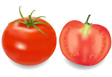 A tomato with its half. Stock Photography