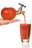 Tomato Juice. A fresh glass of tomato juice being dispensed through a spigot from a tomato Royalty Free Stock Photography