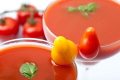 Tomato juice cocktail with fresh basil an cocktail tomato decoration Stock Photography