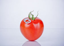 Tomato juice concept Stock Photography