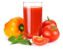 Tomato juice in glass jug with tomato, garlic, spices, and basil isolated on white background royalty free stock photos