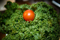 Tomato and kale. At the CHristmas dinner royalty free stock images