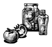 Tomato and ketchup. Vector  illustration of a tomato and ketchup stylized as engraving Royalty Free Stock Image