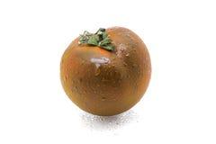 Tomato kumato Royalty Free Stock Photography