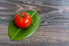 Tomato on a leaf plants. Tomato on a piece of plant on wooden background Stock Photography