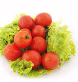 Tomato and lettuce Royalty Free Stock Image