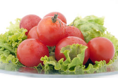 Tomato and lettuce Royalty Free Stock Images