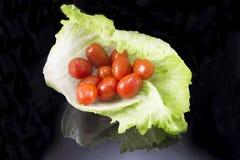 Tomato lettuce. Background Royalty Free Stock Image