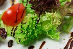 Tomato and lettuce closeup. Royalty Free Stock Photo