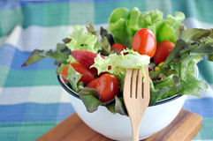 Tomato and Lettuce on Fork Royalty Free Stock Photography