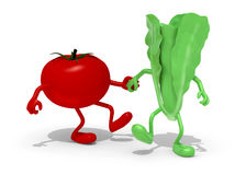 Tomato and lettuce hand in hand Royalty Free Stock Photography