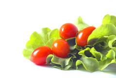 Tomato and Lettuce. The isolate of red tomato and green lettuce stock photo