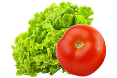 Tomato and lettuce salad isolated on white background. Vegetables isolated on white background as package design element. Healthy eating. Food photography royalty free stock photo