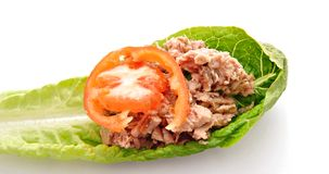 Tomato, lettuce and tuna Royalty Free Stock Image