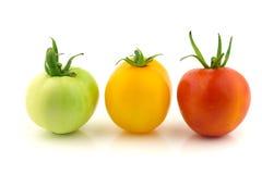 Tomato light signal Royalty Free Stock Photo