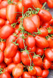 Tomato,lovepapple Royalty Free Stock Images