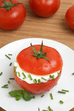 Tomato with lowfat cottage cheese and dill Royalty Free Stock Photo