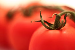 Tomato in macro Stock Images