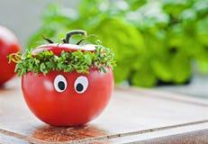 Tomato man. Funny yummy tomato face man Stock Photo