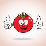 Tomato mascot cartoon character Royalty Free Stock Images