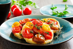 Tomato mini Tartu Royalty Free Stock Image